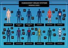 Ciała ludzkiego infographics ilustracji