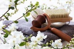Ciała muśnięcie, loofah i massager dla naturalnej piękno rutyny, Zdjęcia Royalty Free