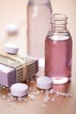 ciała opieki istotny ziołowy oleju mydła zdrój zdjęcia royalty free