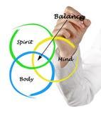 Ciało, duch, umysł równowaga zdjęcie royalty free