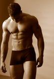 ciało fitness obraz royalty free