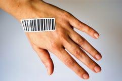 ciało prętowe części kodu zdjęcie royalty free