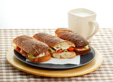 Ciabatta Royalty Free Stock Photo