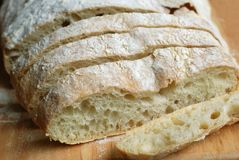 Ciabatta Bread. Italian ciabatta slices- freshly baked gourmet bread Stock Photography
