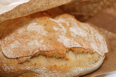 Ciabatta bread in the brown bag Stock Image
