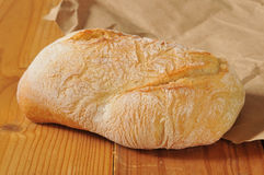 Ciabatta bread loaf Stock Image