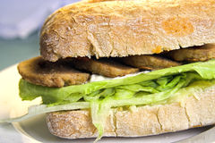 Ciabatta de la hamburguesa de la soja Fotografía de archivo