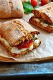Ciabatta de mozzarella, de Prosciutto et de figue images stock