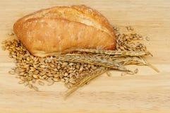 Ciabatta e grano Immagine Stock