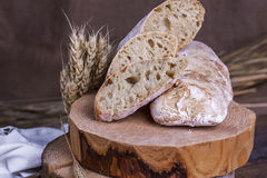 Ciabatta with ears of wheat on a white wooden table. Homemade ciabatta with ears of wheat on a white wooden table royalty free stock images