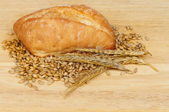 Ciabatta and grain Stock Image