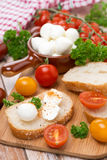 Ciabatta, mozzarella, fresh herbs and colorful cherry tomatoes Royalty Free Stock Images