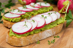 Ciabatta with pate of avocado and fresh radish, close-up. Horizontal Royalty Free Stock Images