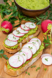 Ciabatta with pate of avocado and fresh radish on wooden board. Vertical Royalty Free Stock Image