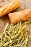 Ciabatta y pan del baguette Foto de archivo