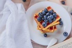 Cialde belghe con i mirtilli sulla tavola di legno leggera Prima colazione sana Fotografie Stock Libere da Diritti