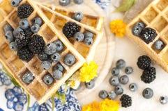 Cialde belghe con le fragole, i mirtilli e lo sciroppo, prima colazione sana casalinga, immagine tonificata, fuoco selettivo, fotografia stock libera da diritti