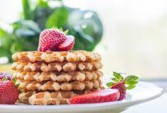 Cialde belghe con lo strawbery Immagini Stock