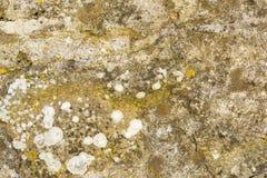 Ściana cement Obraz Royalty Free