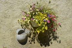 Ściana i kwiaty Fotografia Royalty Free