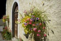 Ściana i kwiaty Zdjęcia Royalty Free