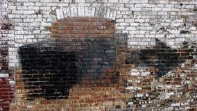 ściana miejskiej Zdjęcie Royalty Free