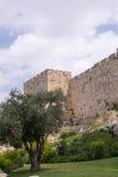 Ściana stary Jerozolima Zdjęcia Stock