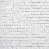 ściana z cegieł biel Fotografia Stock