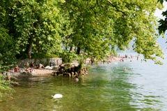 Ciani植物的公园海滩在瑞士的卢加诺 免版税库存照片