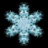 Ciano fiocco di neve puro molle sul nero illustrazione vettoriale