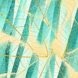 Ciano foglie Fotografie Stock