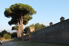 Ściany Pompeii Zdjęcie Stock