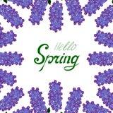 Ciao confine del lillà della primavera illustrazione vettoriale