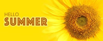 Ciao dettagli del primo piano del testo e del girasole di estate sulla foto gialla di macro del fondo dell'insegna Fotografia Stock Libera da Diritti