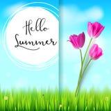 Ciao estate, cartolina Tulipani rosa sul contesto blu del cielo di estate Erba verde e nuvole bianche Disegnato a mano Fotografia Stock