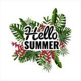 Ciao estate Fondo delle foglie di palma Party il manifesto Fotografie Stock