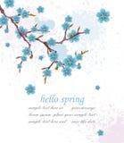 Ciao fondo d'annata della molla con i fiori blu Illustrazione di vettore Ambiti di provenienza eleganti della carta di Minimalist illustrazione vettoriale
