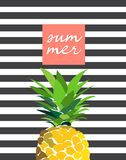 Ciao illustrazione dell'ananas di estate Immagini Stock Libere da Diritti