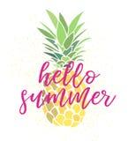 Ciao illustrazione dell'ananas di estate Immagine Stock Libera da Diritti