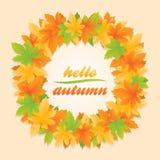 Ciao insegna del cerchio delle foglie di autunno fotografie stock libere da diritti