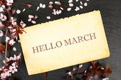 Ciao marzo Immagine Stock