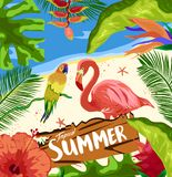 Ciao partito della spiaggia di estate La foresta pluviale tropicale della giungla pianta gli uccelli dei fiori, il fenicottero, f illustrazione di stock