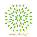 Ciao primavera Mandala delle foglie Illustrazione di vettore Elemento di progettazione con le foglie verdi illustrazione vettoriale