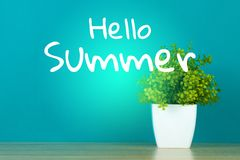 Ciao testo di estate con poco mazzo decorativo del fiore e dell'albero Immagini Stock Libere da Diritti