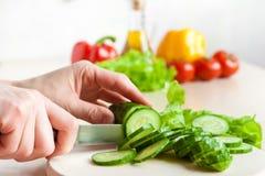 ciapania ogórka oleju sałatkowy warzywo Fotografia Stock