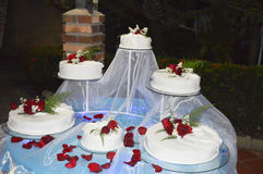 8 ciast ślub Obraz Royalty Free