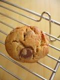 ciasteczka domowej roboty Zdjęcia Stock