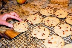 ciastka domowej roboty Zdjęcie Stock