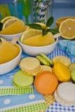 Ciastka i Pomarańczowy Lody Obrazy Royalty Free