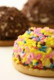 ciastka kolorowy marshmallow Fotografia Royalty Free